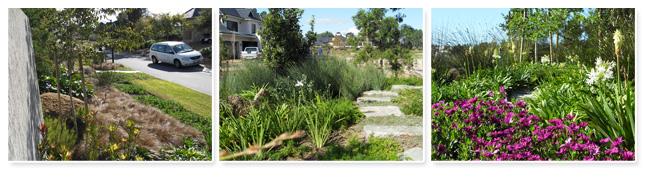Landscape Architecture Cape Town